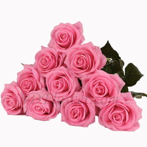 Send 10 pcs imported pink roses in bouquet to Bangladesh