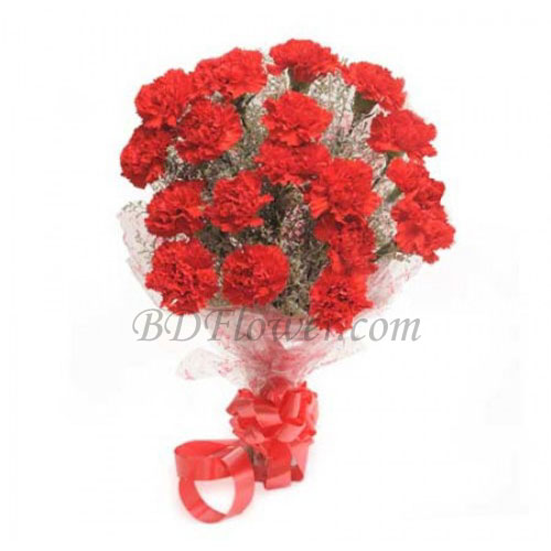 Send 24 pcs red carnations in bouquet to Bangladesh