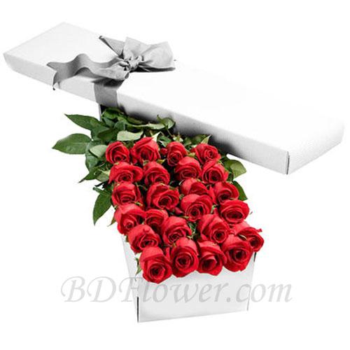Send 2 dozen red roses in box to Bangladesh