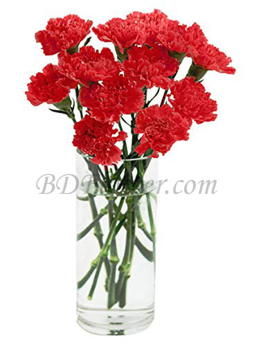 Send 12 pcs red carnations in vase to Bangladesh