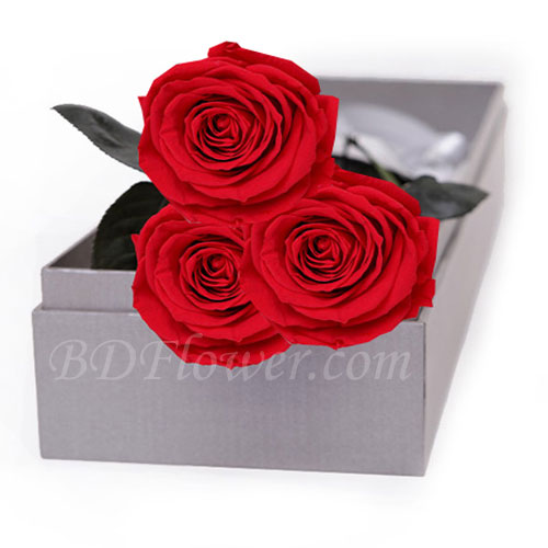 Send 3 pcs red roses in box to Bangladesh