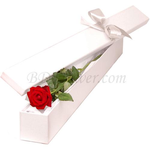 Send single red rose in box to Bangladesh